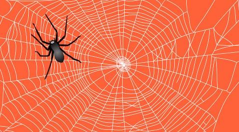 Обзор программы Netpeak Spider, как инструмента технического аудита