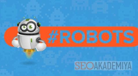 Что такое мета-тег Robots и зачем он  нужен?
