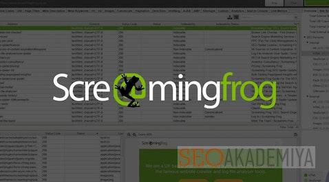 Screaming Frog SEO Spider - обзор программы