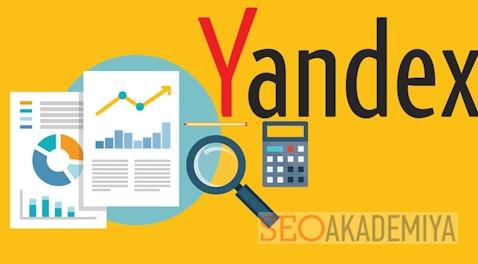 10 важных отчетов в Яндекс Метрике