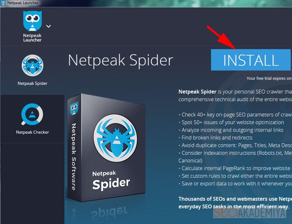 Установка Netpeak Spider