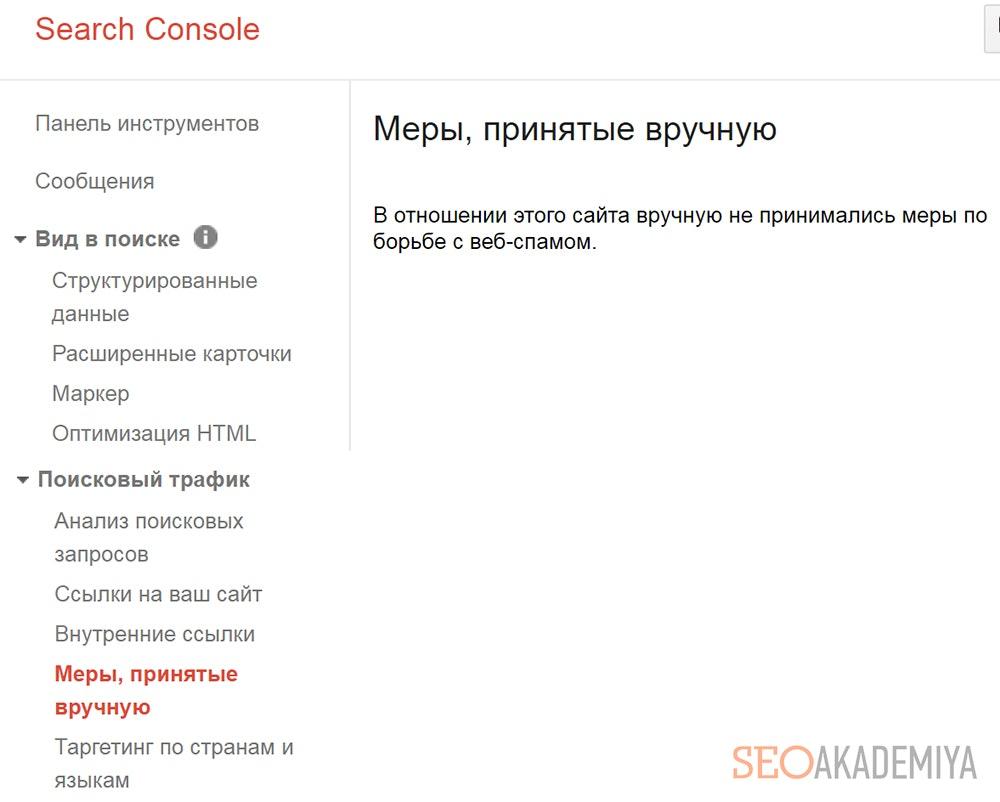Меры, принятые в ручную - фото из Google Search Console