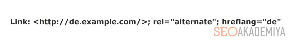 Использование атрибутов hreflang и alternate. Пример 1