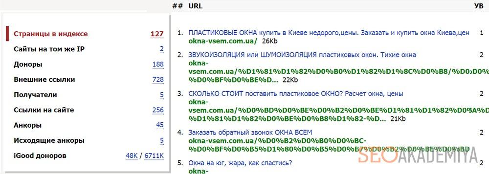Отчет о страницах в индексе