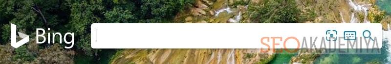 Bing в рейтинге поисковых систем