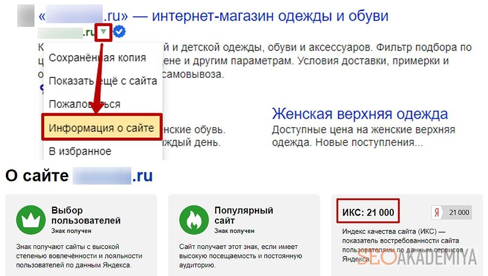 Как проверить икс сайта из поисковой выдачи