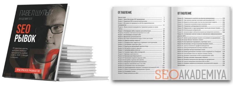 Электронная книга Павла Шульги о seo-продвижении