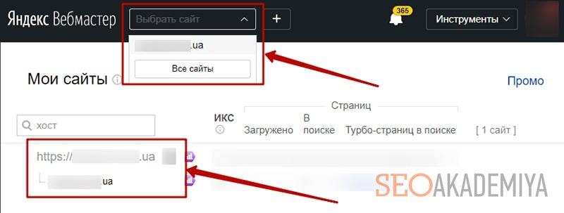 как выбрать добавленный в вебмастере сайт