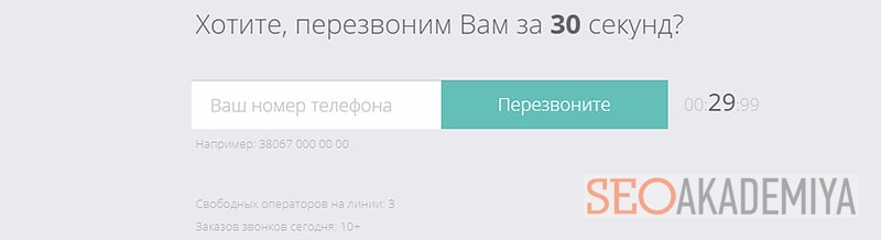 Пример лид формы на сайте в виде заказа звонка
