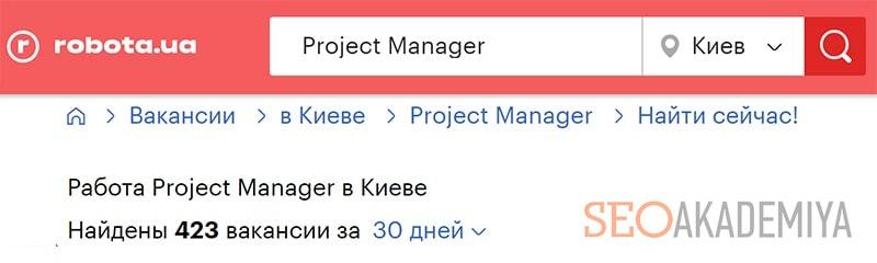 Профессия в IT проджект менеджер