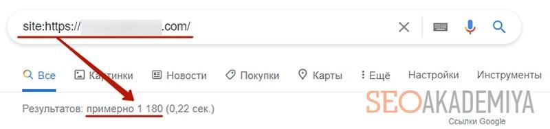 проверка количества страниц сайта донора скриншот